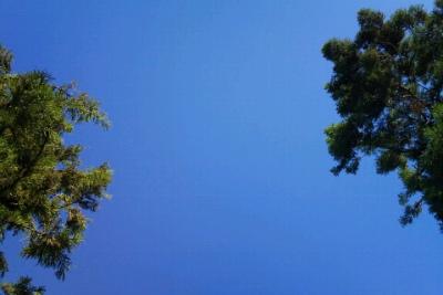 大海のような青色